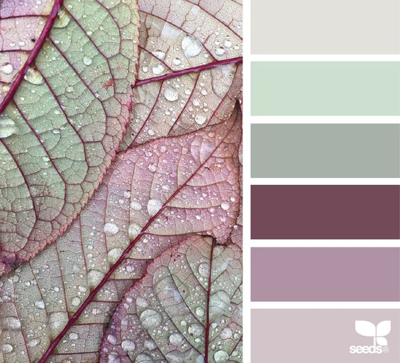 Color Dew via @designseeds
