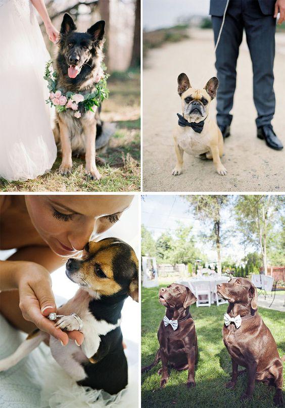Fotografia: o melhor amigo   Mariée: Inspiração para Noivas e Casamentos