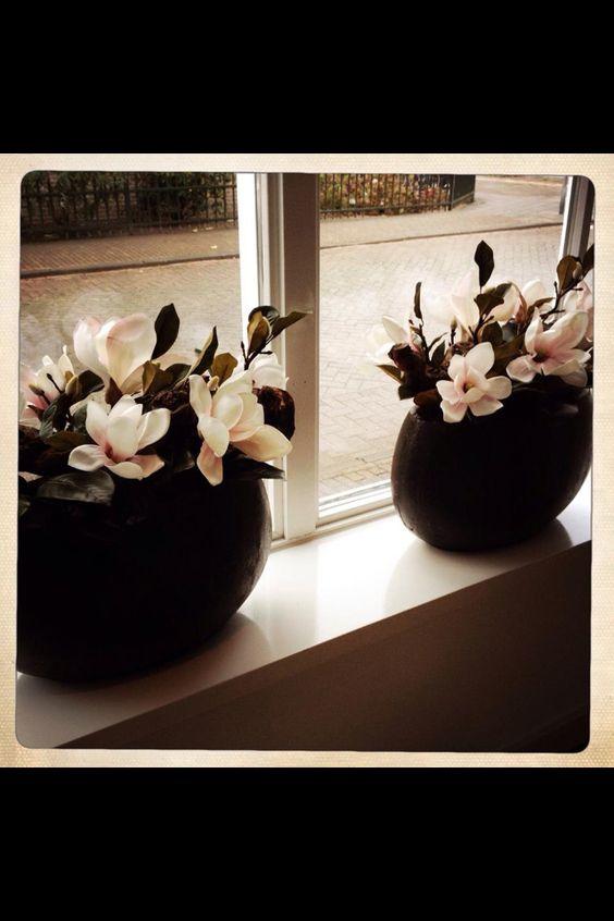 Planten / bloemen in potten vensterbank keuken - 3 dezelfde ...