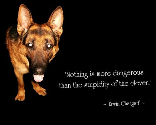 Quote from Erwin Chargaff