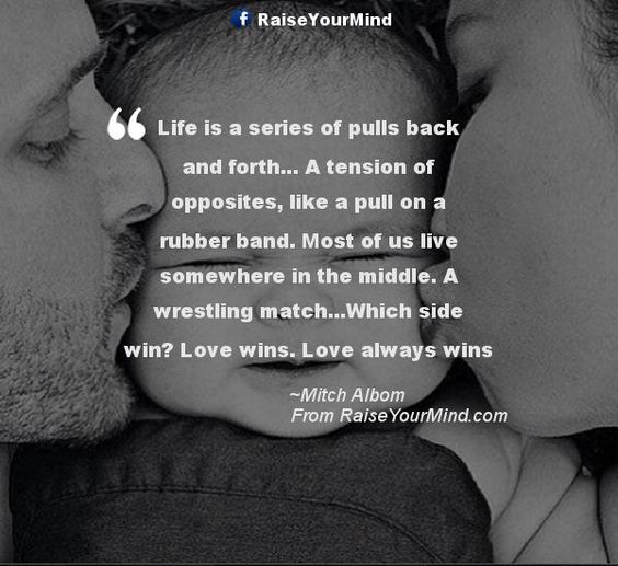 Win Back Love Quotes: Life Is A Series Of Pulls Back And Forth... A Tension Of