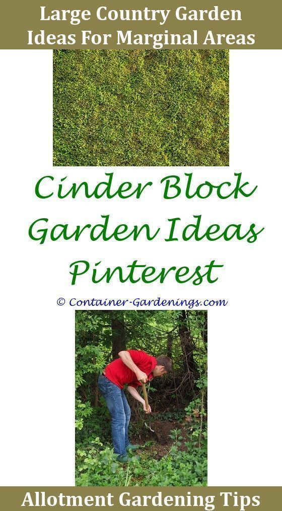 Pin On Diy Small Garden Ideas