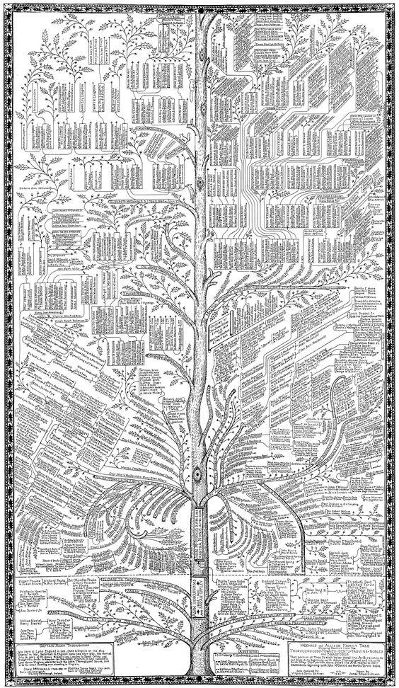 thoroughgood-72.gif (2610×4500)