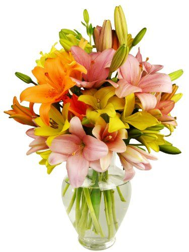 12 Stem Assorted Asiatic Lily Bunch - With Vase: