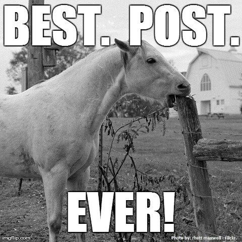 Nom nom best post over!!