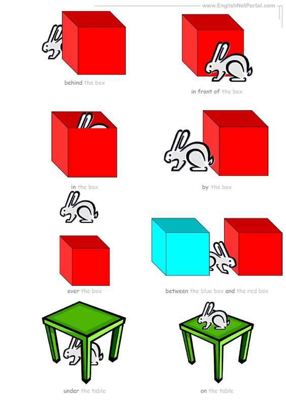 Handout Prepositions Of Place Flashcards Englishnetportalcom
