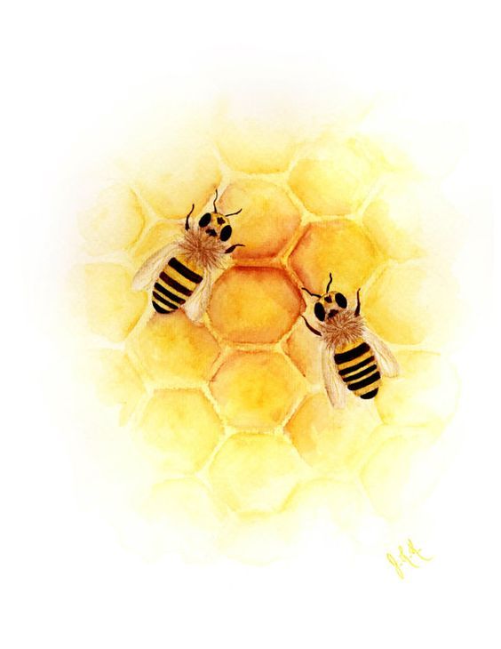 Bees Watercolor Painting And Painting Prints On Pinterest