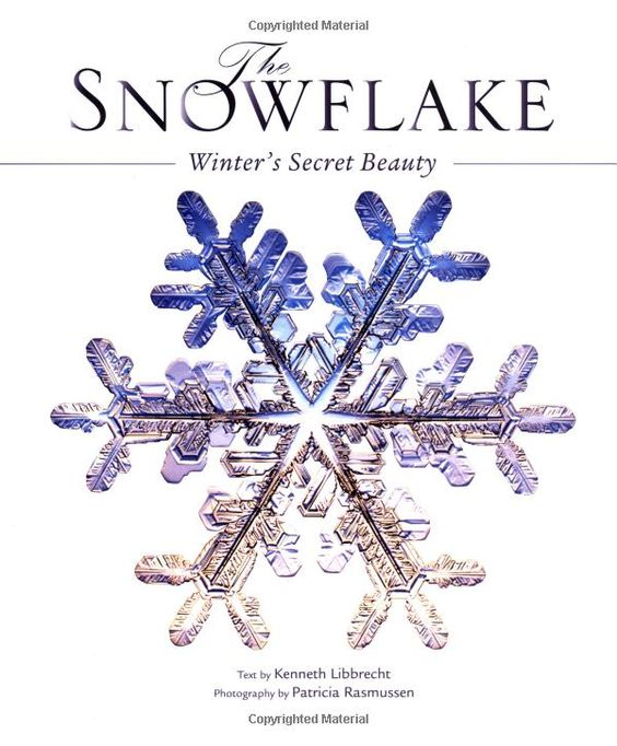The Snowflake by Kenneth Libbrecht #Bools #Snowflake #Kenneth_Libbrecht