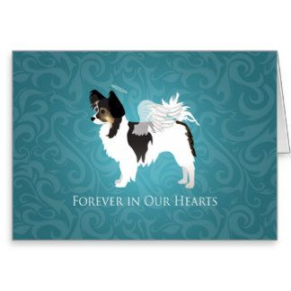 Long-haired Chihuahua Pet Memorial - Sympathy Greeting Card