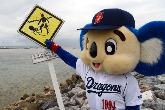 「クラゲが出るから遊泳禁止」・・・入っちゃダメですよ、絶対ダメですよ!(芸人的には飛び込む合図?) 2013中日キャンプ #doala #ドアラ