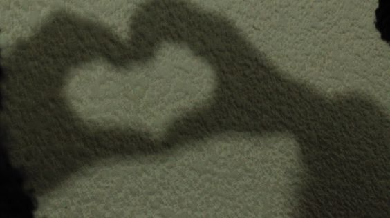 "Titulo:"" sombra amor"" Autor:Téllez Castañeda Miranda Abigail Obturación:1/20 Apertura:3.5 Fecha:7/12/2016 Iso: 1600"