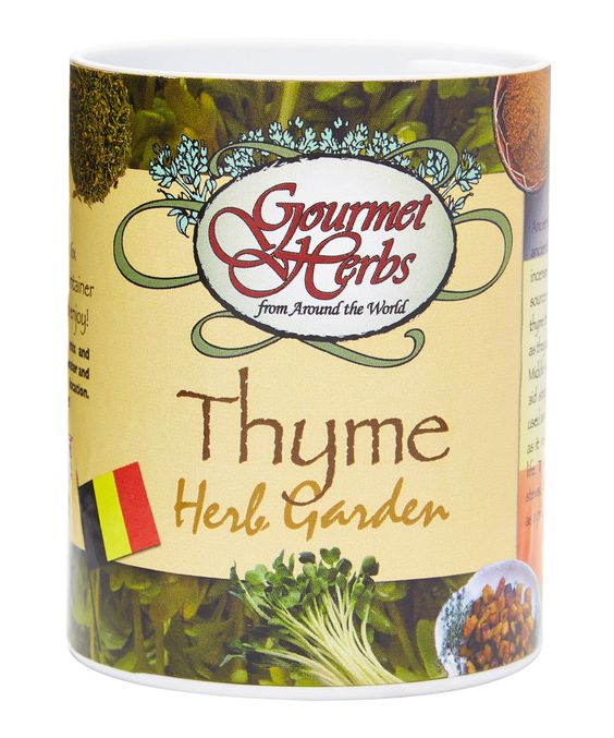 This Thyme Herb 0.25-Oz. Complete Garden Kit by Gifts That Bloom is perfect! #zulilyfinds