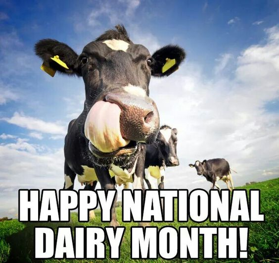 Image result for national dairy month