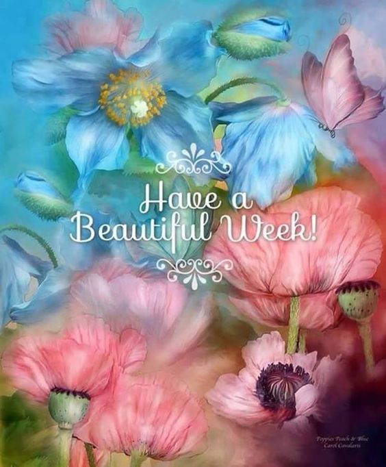To all my Lovelies...have a beautiful week!  from my friend Joanne