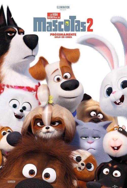 Film The Secret Life Of Pets 2 film complet En Streaming Vf In 2020 Secret Life Secret Life Of Pets Pets