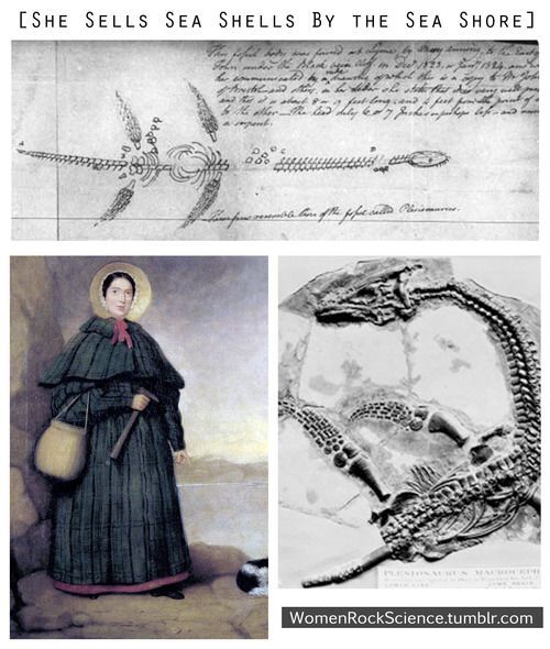 Meet Mary Anning - The Greatest Fossil Hunter Ever Known (sadly, of course, she rec'd very little credit for it in her own lifetime).: