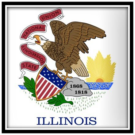 Pin By Amanda Wilhite On U S A State Flags Illinois State Flag