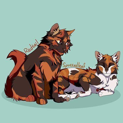 Redtail x Spottedleaf   Warrior cats books, Warrior cats art, Warrior cats