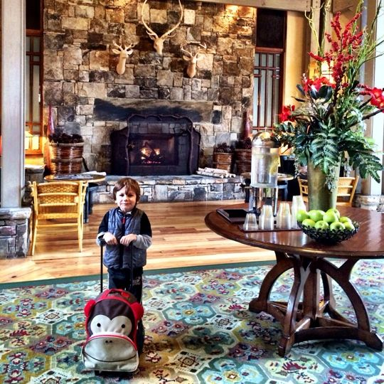 a34b4626f76e9867a50442df82b90acc  hotel reviews dream vacations - The Lodge And Spa At Callaway Gardens Autograph Collection
