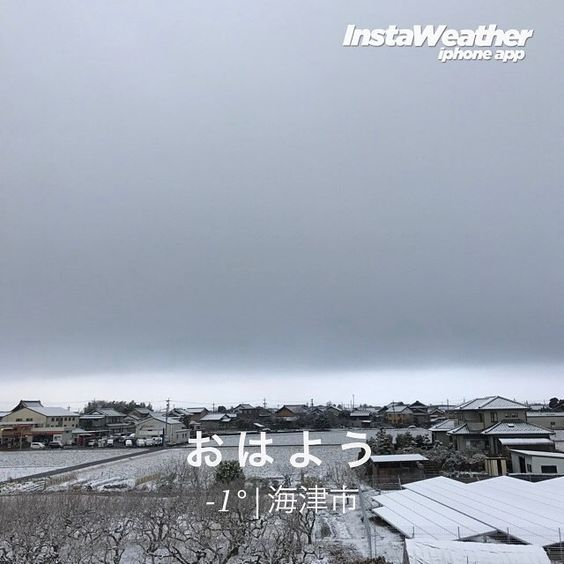 |ョ'ω')おはようございます 雪積もりましたが道路にはありません{{{{(ω)}}}}寒ううぅ 今日も((((゚Д゚){よろしくぉねがぃしますッ!!