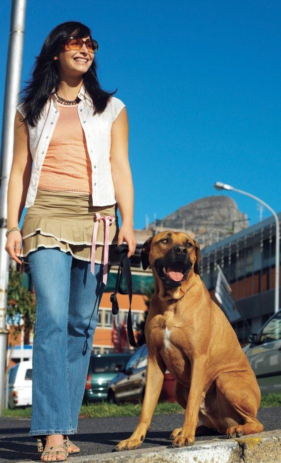 Tierhalter-Haftpflichtversicherung