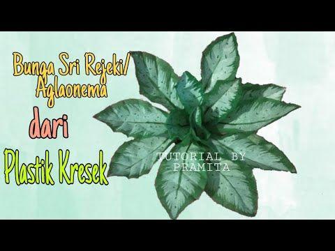Diy Cara Membuat Bunga Sri Rejeki Aglonema Dari Plastik Kresek Youtube Plastic Bag Crafts Paper Flowers Ornament Tutorial
