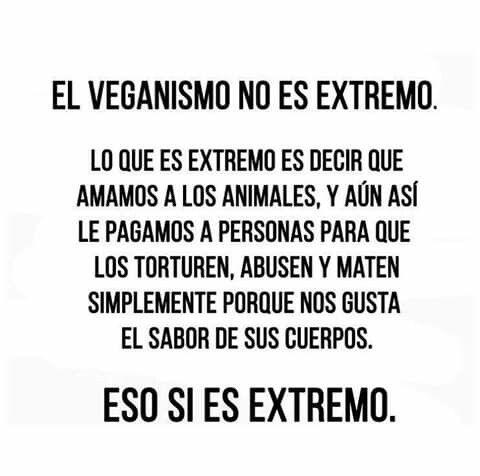 Veganismo extremo | Frases veganas, Estilo de vida vegano, Frases  vegetarianas
