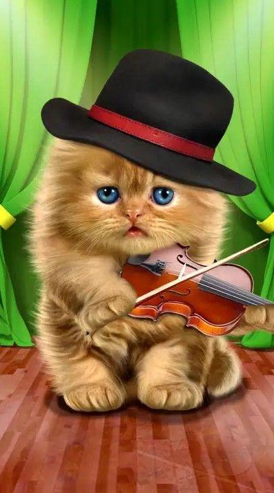 El pianista gatuno