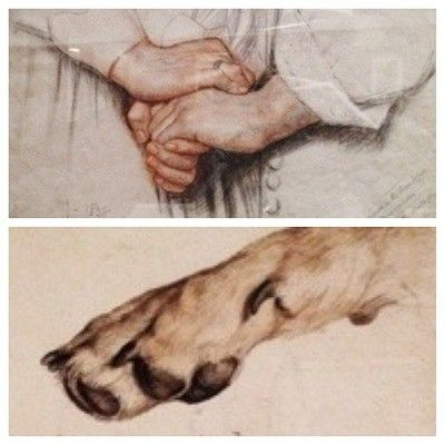 (Study for Fresco in Peer's Corridor, Pakace of West Minister) 1858 by Charles West Cope and Studies if a Dog's Paw 1816 by Edwin Henry Landseer