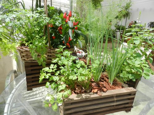 mini-horta-apartamento-floreira