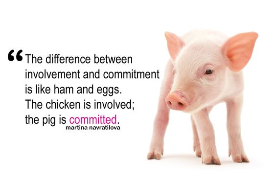 "Commitment Chicken Pig Bacon Eggs: ""The Difference Between Involvement And Commitment Is Like"