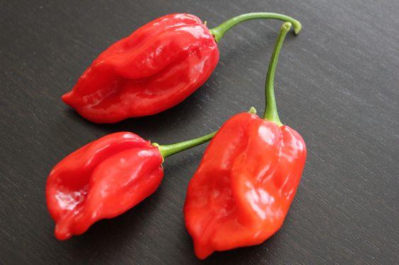 Habañero Pepper Jelly