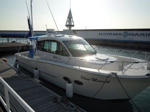 New Yanmar boat with new Yanmar hatches.  They have Outland rigid covers to protect them and going to the Japan International Boat Show