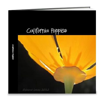 my book of poppies