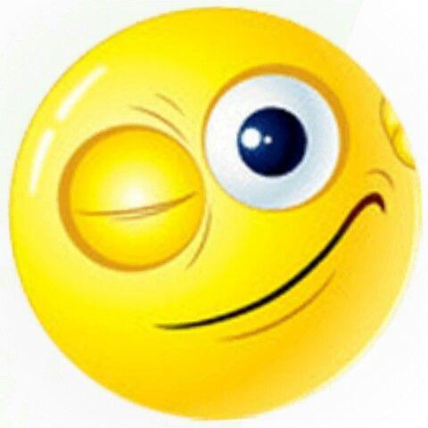 Smiley zwinkernder plemnesssorigh: Was
