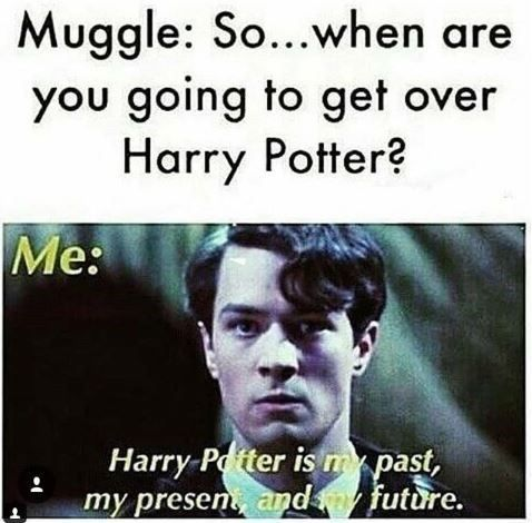 Cheap Sale 60 Off Visit Harry Potter Meme With Caption That Reads Muggle So When A Harry Potter Puns Harry Potter Funny Harry Potter Memes Hilarious