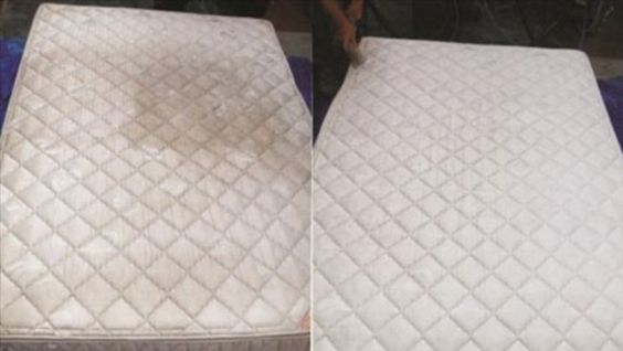 Elimina Manchas y Olores de tu colchón, con este EFICIENTE y Maravilloso remedio!!! | Grupo palomo oficial