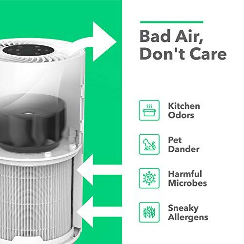 20 Best Filter Air Purifiers You Can Buy In 2020 In 2020 Filter