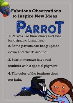 Biomimicry Fabulous Observations - Parrots by Sparking Children's Thinkibility | Teachers Pay Teachers