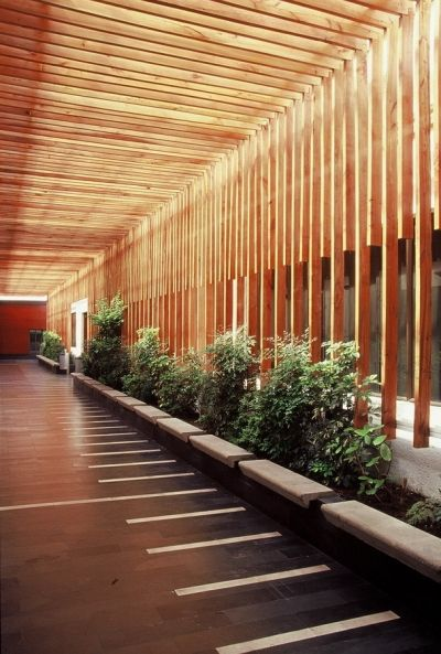 lleno vacío. Inspired by the entry of natural light through the reddish-orange wooden panels.