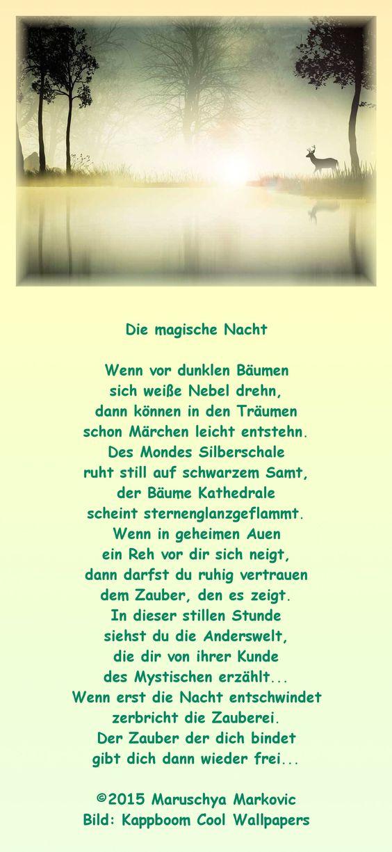 """""""Die magische Nacht"""" Vielleicht kann euch dieses Gedicht zum Abend  märchenhafte Träume bringen..."""