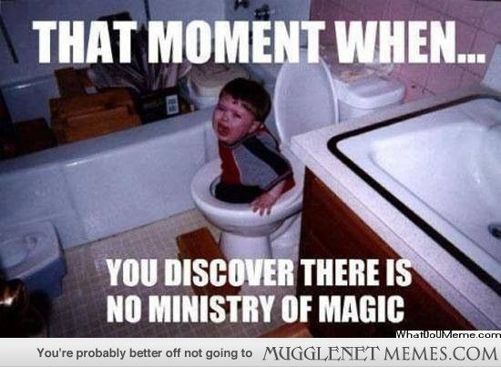 Funny Harry Potter Birthday Meme : Harry potter memes and funny pics mugglenet