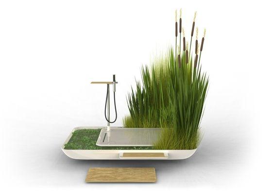 Banho verde