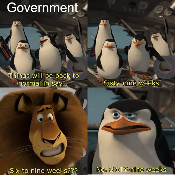 This Is Government