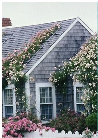 Dream Beach Cottage With Neutral Coastal Decor: Nantucket Roses. A House Is Built With Walls And Beams, A