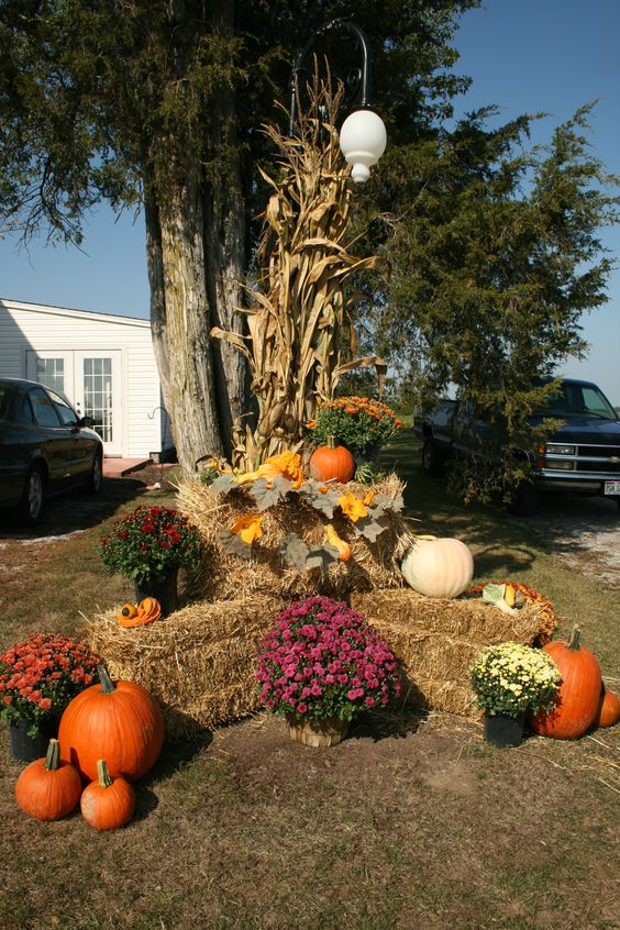 Gardens pumpkin garden and best halloween costumes on for Bales of hay for decoration
