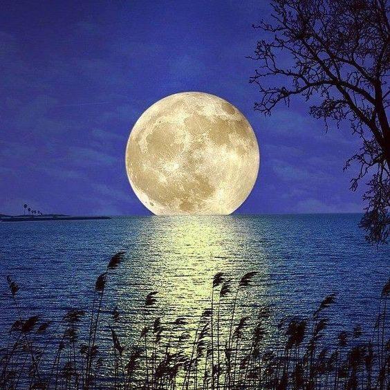 Luna Llena                                                                                                                                                      Más