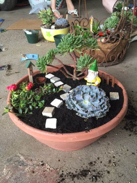 Fairy Gardens are a great office activity!