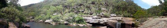 Jinga trail Dharawal