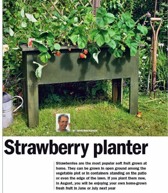 #2133 Strawberry Planter Plans - Outdoor Plans